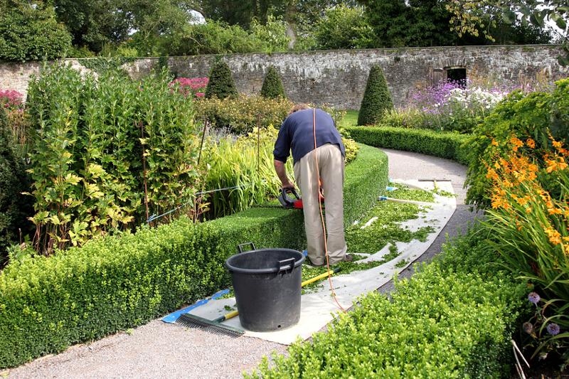 intec mantenimiento de parques y jardines