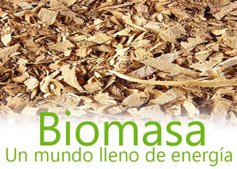 CURSO SUPERIOR DE ENERGÍA DE LA BIOMASA I