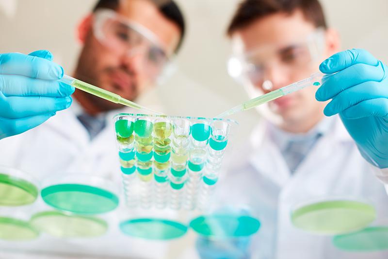 QUIA0208 ENSAYOS MICROBIOLÓGICOS Y BIOTECNOLÓGICOS